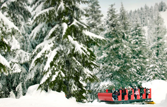 Dream Of A White Christmas Down At Sea Level The Snow Is Abundant Peak Vancouverour Visitors Experience Grouse Mountain