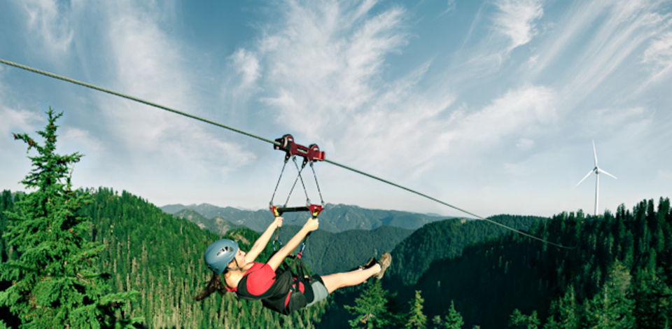 Mountain ziplines forest