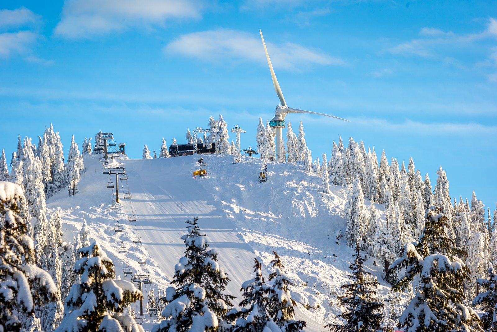 Grouse Mountain Named Top Tourist Destination In Vancouver