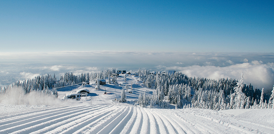 Winter On Grouse Mountain