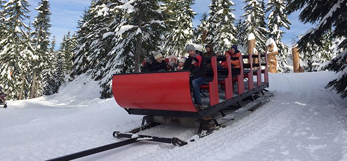 sleigh rides grouse mountain the peak of vancouver
