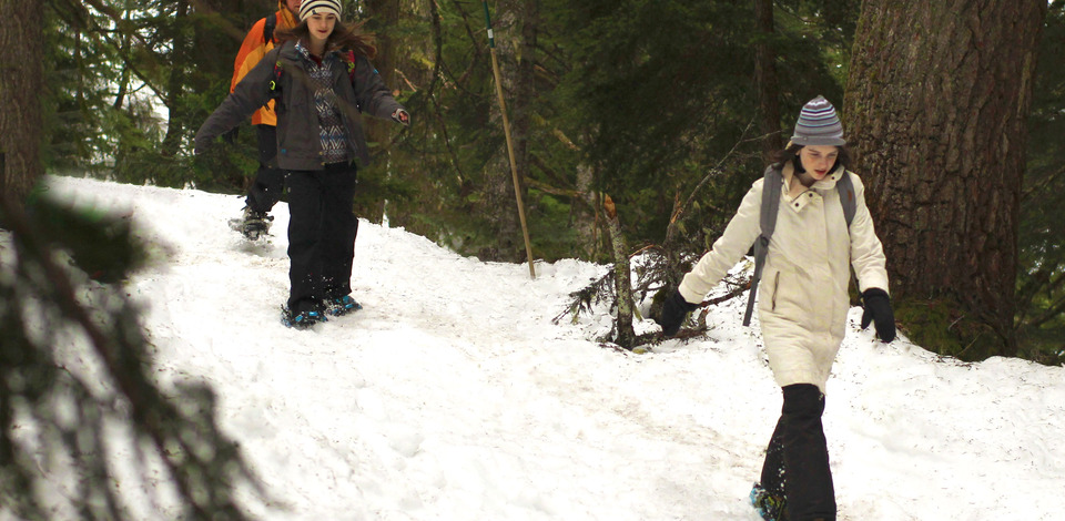 Guided Snowshoe Field Trips