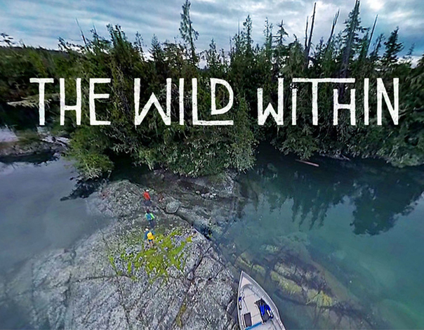 Summer 2017 film for the Theatre in the Sky - wild themed