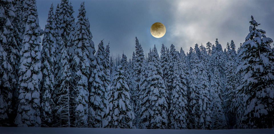 Full Moon Snowshoe Tours