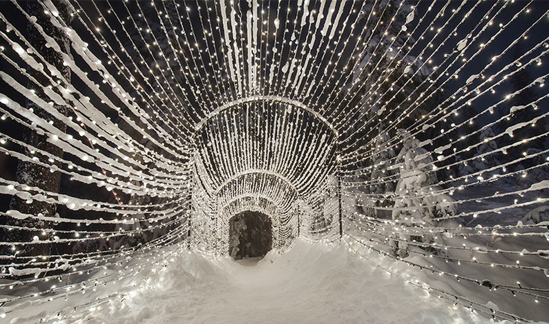 Enjoy Our Light Walk Tunnel This Winter