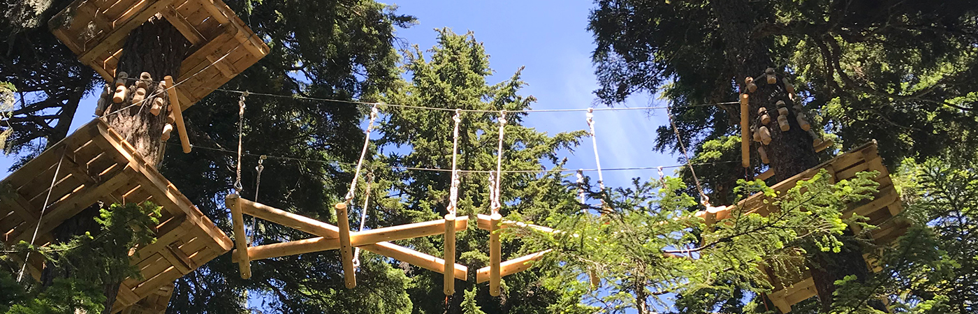 New aerial ropes course coming to Grouse Mountain