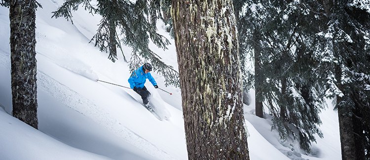 Insider tips and prepping for ski and snowboard season