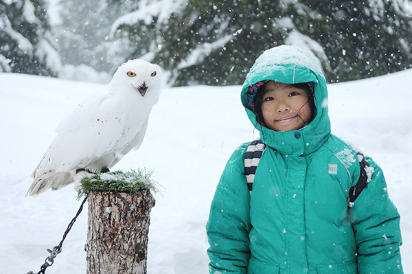Join Grouse Mountain for fun spring break camps!