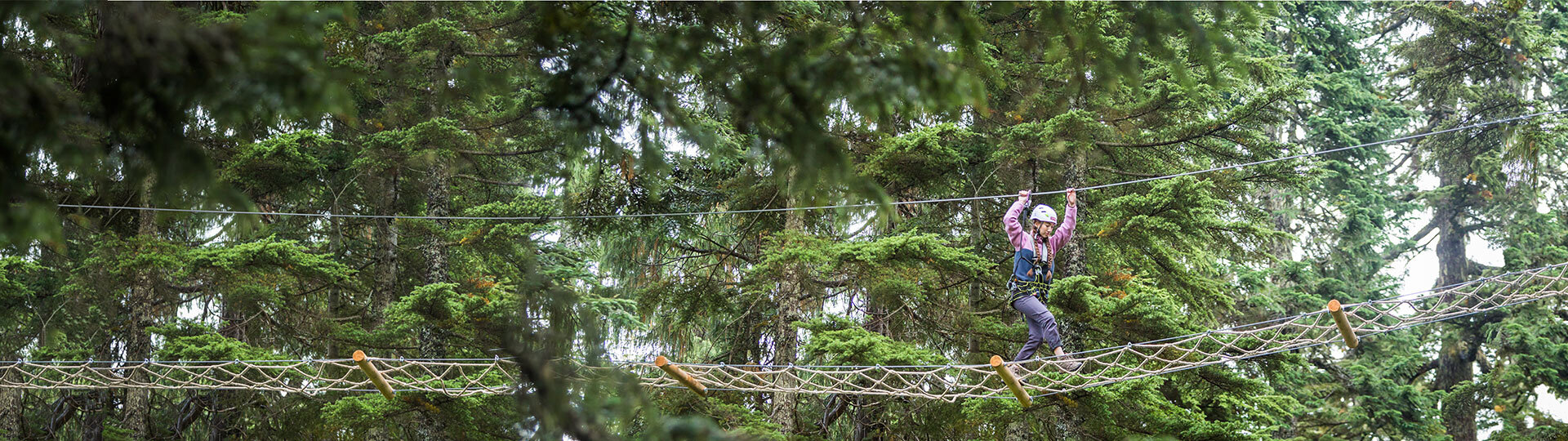 Discover Grouse Mountain from the tree tops this summer in Mountain Ropes Adventure